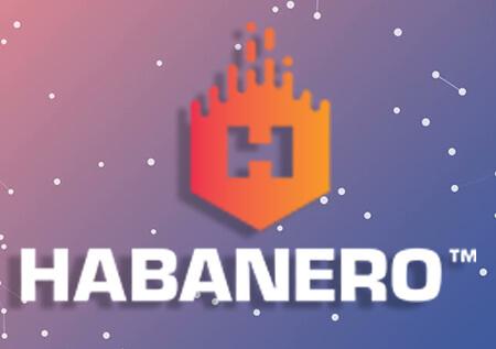 Cara Untuk Menjadi Pemain Game Slot Habanero Yang Profesional
